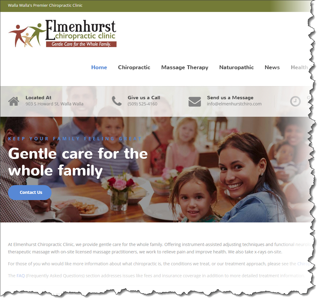 New Elemenhurst Chriropractic Clinic website snapshot